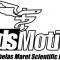 Logo Medsmo